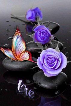 Purple Butterfly, Butterfly Flowers, Beautiful Butterflies, Beautiful Roses, Purple Flowers, Blue Roses Wallpaper, Butterfly Wallpaper, Zen Wallpaper, Purple Love