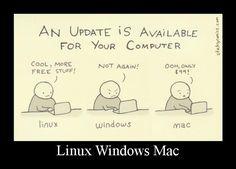 Linux vs. Windows vs. Mac.