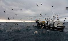 Asturias: Un mar de leyenda   Traveler