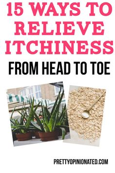 If itchy bug bites, poisonous plants, and heat rashes are ruining your summer, you need to check out these home remedies and natural itch relief solutions! Trust me, once you do, you'll have a much happier summer!