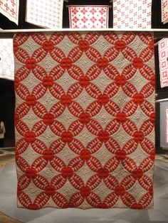 Infinite Variety: Three Centuries of Red and White Quilts | Flickr - Photo Sharing!