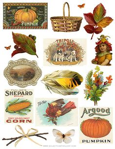 Vintage+Fall+Art | FREE Vintage Autumn Clip Art Collage Sheet