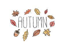 Autumn Hand Typography