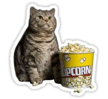 """""""popcorn cat"""" Stickers by LennardH Stickers Cool, Meme Stickers, Tumblr Stickers, Printable Stickers, Cat Icon, Snapchat Stickers, Aesthetic Stickers, Sticker Design, Memes"""
