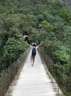 UC Davis Summer Abroad, Ecuador: 'Sustainable Ecuador--From the Andes to the Amazon' http://studyabroad.ucdavis.edu