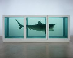 Damien Hirst at Tate Modern, The Physical Impossibility of Death in the Mind of Someone Living, 1991. Glass, steel, silicon, formaldehyde solution and shark. © Damien Hirst and Hirst Holdings Ltd, DACS 2011. Photographed by Prudence Cuming Associates