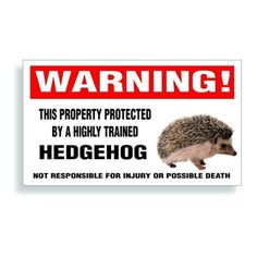 Amazon.com: Warning Decal, Property Protected By A Highly Trained - Hedgehog Pet Bumper, Cage Or Window Sticker - 5.75x3.25 inch: Automotive...