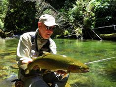 Beautiful wild brown trout new zealand pinterest for Grumpy s fishing report