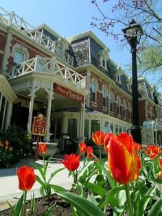 Niagara On The Lake.... the most beautiful town I have visited!