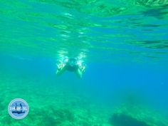 - Zorbas Island apartments in Kokkini Hani, Crete Greece 2020 Crete Greece, Strand, Northern Lights, Waves, Nature, Outdoor, Snorkeling, Mediterranean Sea, Greece