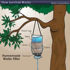 Photo: Here is how to make a home made WATER FILTER. You never know when this kind of knowledge may be needed. The way the world appears to be heading, this could prove vital information. Its a quick, simple and effective method used from obtainable equipment.