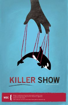 animal protection poster | 17 best images about Animal Cruelty / Rights on Pinterest ...