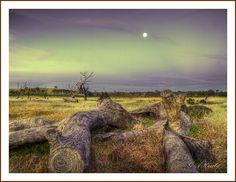 Sunset Moon #2