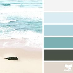 today's inspiration image for { color sea } is by @anamarques210376 ... thank you, Ana, for another breathtaking #SeedsColor image share!