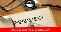 Brotes de norovirus en el Condado de Douglas Más detalles >> www.quetalomaha.com/?p=7172