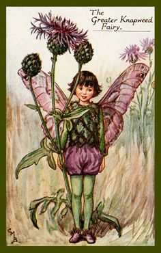 The Knapweed Fairy by Cicely Mary Barker from the 1920s. Quilt Block of vintage fairy image printed on cotton. Ready to sew.  Single 4x6 block $4.95. Set of 4 blocks with pattern $17.95.