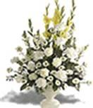 White flowers with glads and roses in a vase to Hyderabad delivery. Cheapest price range from others website.  Visit our site : www.flowersgiftshyderabad.com/Condolence-to-Hyderabad.php