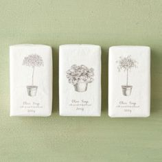 Gardener's Olive Soap in Gifts Perfect For... The Gardener at Terrain