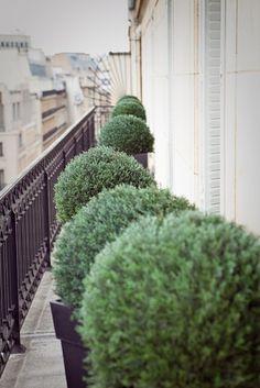 ♥ Inspirations, Idées & Suggestions, JesuisauJardin.fr, Atelier de paysage Paris, Stéphane Vimond Créateur de jardins en ville #landscape #paysage #landart #topiary #topiaire