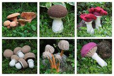 Mushroom - Vol. 1-6 (Champignons, Chanterelle, Mycena, Bloody Brittlegill, King Bolete, Rosy Spike Cap) - crochet pattern, PDF