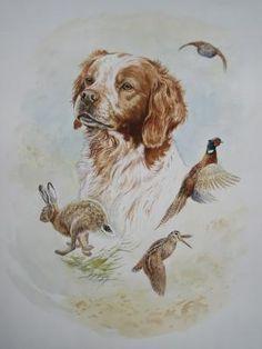 Hunting Art, Hunting Dogs, Dog Illustration, Illustrations, Hunting Drawings, Dog Corner, Vintage Dog, Wildlife Art, Dog Art
