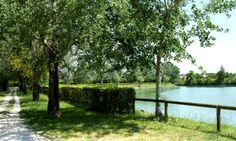 COTIGNOLA - Parco Pertini (foto Archivio Comunale).