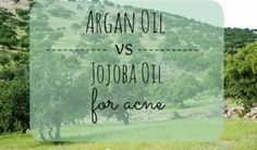 Argan Oil vs Jojoba Oil for Acne Argan oil and Jojoba oil are great for acne, but which one is better? Learn all you need to know about these 2 oils, and decide which is best. Argan Oil Vs Jojoba Oil, Argan Oil Face, Argan Oil For Acne, All Natural Skin Care, Organic Skin Care, Natural Face, Natural Oils, Natural Health, Argan Oil Uses For Hair