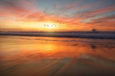 grass field at daytime photo – Free Sky Image on Unsplash Sunset Images, Nature Images, Nature Pictures, Sunset Pictures, Sunset Photos, Golden Hour Photos, Sunset Sea, Beach Sunrise, San Diego Beach