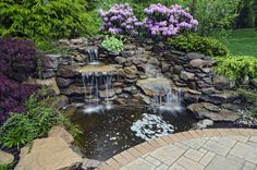 Beautiful waterfeature framed by a Japanese Maple, Rhododendron, Hemlocks, Cotoneaster, Heuchera, along with Unilock Avante Ashlar Pavers enclosed in a Clay Brick Border.