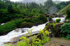 Munnar is a special destination and Attukad waterfalls is a striking destination for Kerala honeymoon packages