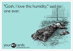 'Gosh, I love this humidity', said no one ever.
