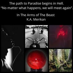 In The Arms of The Beast (Kings of Hell MC #5)   Gay Book Reviews Win My Heart, Opposites Attract, We Meet Again, Above And Beyond, Book Reviews, Beast, Gay, Arms, Romance