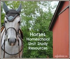 Learning About Horses - Homeschool Study Resources