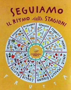 FRUTTA E VERDURA DI STAGIONE Le nostre ruote della stagionalità si riferiscono a frutta e verdura 100% italiana.