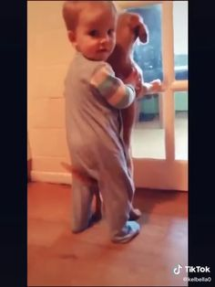 Cute Baby Videos, Funny Videos For Kids, Cute Animal Videos, Funny Animal Videos, Pet Videos, Funny Animal Jokes, Cute Funny Animals, Cute Baby Animals, Dogs And Kids