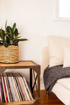 House Plants: How to Care For Them During Winter | Apartment Therapy