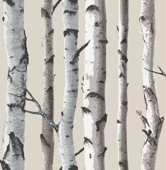 Fine Decor - fd31051 - Unverwechselbar Buche Baum Tapete - creme | Heimwerker, Farben, Tapeten & Zubehör, Tapeten & Zubehör | eBay!