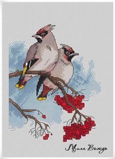 Gallery.ru / Свиристели (средняя часть) - Схемы - платные - Redbest Cross Stitch Bird, Cross Stitch Animals, Cross Stitch Designs, Cross Stitch Embroidery, Cross Stitch Patterns, Kittens And Puppies, Little Birds, Christmas Cross, Crochet Flowers
