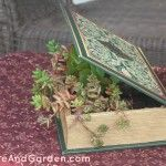 Recently I was surfing the web and I saw something that caught my fancy. It was a planter made from a book! You can see the DIY tutorial here.  It wa ...
