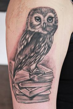 Image detail for -perfectly detailed owl sitting on a pile of books stands for…