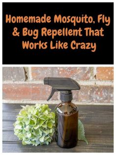 This natural herbal spray will repel mosquitoes, flies and other annoying bugs and stop you getting bitten this summer. Mosquito Yard Spray, Diy Mosquito Repellent, Mosquito Repelling Plants, Insect Repellent, Flies Repellent Outdoor, Natural Mosquito Spray, Mosquito Repellent Essential Oils, Essential Oil Bug Spray, Mice Repellent