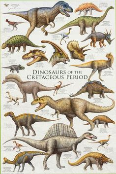 An awesome poster of dinosaurs from the Cretaceous Period - including Tyrannosaurus Rex, Triceratops, and Velociraptor! Fully licensed. Ships fast. 24x36 inches