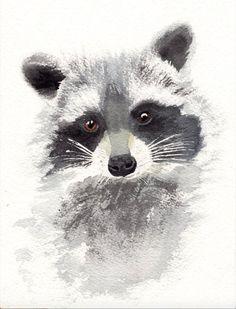 Watercolor Whale, Pen And Watercolor, Watercolor Animals, Watercolor Paintings, Watercolors, Raccoon Drawing, Raccoon Art, Animal Paintings, Animal Drawings