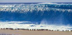 Waves...BIG WAVES