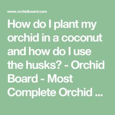 How do I plant my orchid in a coconut and how do I use the husks? - Orchid Board - Most Complete Orchid Forum on the web !