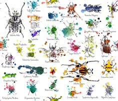 Julie's Beetles Collections fabric by juliesfabrics on Spoonflower - custom fabric