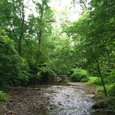 Sewickley Creek