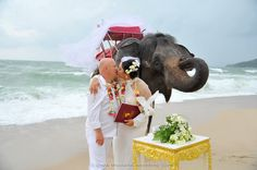 Phuket Beach Marriage Phuket Wedding, Thailand Wedding, Destination Wedding, Elephant Wedding, Marriage, Beach, Animals, Valentines Day Weddings, Animales