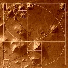 If the face and pyramids are real it means the connection between mars and egypt = a mars civilization created humans. Description from moonconspiracy.wordpress.com. I searched for this on bing.com/images