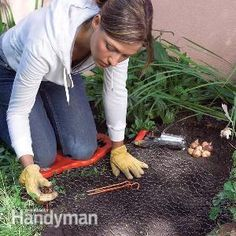 Love to garden? Check out these wonderful ideas to make it even more of a pleasure.